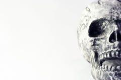 κρανίο Στοκ φωτογραφία με δικαίωμα ελεύθερης χρήσης