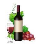 κρασί αμπέλων γυαλιού butilka Στοκ Φωτογραφία