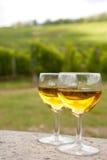 κρασί γυαλιών της Αλσατίας Στοκ φωτογραφία με δικαίωμα ελεύθερης χρήσης