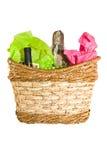 κρασί δώρων τυριών καλαθιών Στοκ Εικόνες