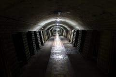 κρασί ζωής μπουκαλιών ανασκόπησης άσπρο λαμπιρίζοντας ακόμα Στοκ Εικόνες