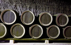 κρασί κελαριών Στοκ Εικόνες