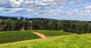 κρασί κοιλάδων βουνών χωρών στοκ εικόνα