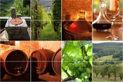 κρασί κολάζ Στοκ φωτογραφία με δικαίωμα ελεύθερης χρήσης