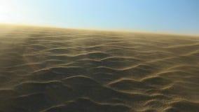 Κρασί που φυσά σε έναν αμμόλοφο άμμου απόθεμα βίντεο