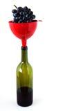 κρασί σταφυλιών χοανών μπο& Στοκ Εικόνες