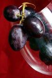 κρασί σταφυλιών Στοκ φωτογραφία με δικαίωμα ελεύθερης χρήσης