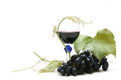κρασί σταφυλιών στοκ φωτογραφίες
