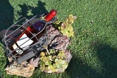 Κρασί στη χλόη Στοκ φωτογραφίες με δικαίωμα ελεύθερης χρήσης