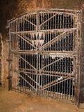 Κρασί στο κελάρι Στοκ φωτογραφία με δικαίωμα ελεύθερης χρήσης