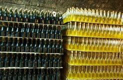 κρασί συλλογής μπουκα&lam Στοκ Εικόνες