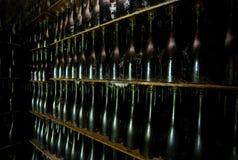 κρασί συλλογής μπουκα&lam Στοκ Εικόνα