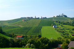 κρασί του Styria λόφων Στοκ φωτογραφία με δικαίωμα ελεύθερης χρήσης
