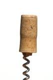 κρασί φελλού μπουκαλιών Στοκ Εικόνα