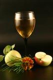 κρασί χλόης μήλων Στοκ φωτογραφίες με δικαίωμα ελεύθερης χρήσης
