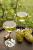 κρασί Στοκ Εικόνα