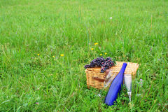 κρασί PIC καλαθιών NIC Στοκ εικόνες με δικαίωμα ελεύθερης χρήσης
