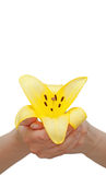 κρατημένος χέρια κρίνος λουλουδιών Στοκ εικόνα με δικαίωμα ελεύθερης χρήσης