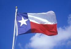 Κρατική σημαία του Τέξας Στοκ Φωτογραφίες