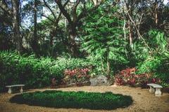 Κρατικό πάρκο βαλανιδιών της Ουάσιγκτον Στοκ φωτογραφία με δικαίωμα ελεύθερης χρήσης