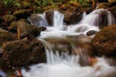 Κρατικό πάρκο πτώσεων Wallace, πολιτεία της Washington στοκ φωτογραφίες