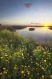 Κρατικό πάρκο πλαισίων θάλασσας Στοκ φωτογραφία με δικαίωμα ελεύθερης χρήσης