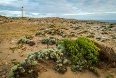 Κρατικό πάρκο του Nelson ακρωτηρίων κοντά στο Πόρτλαντ στην Αυστραλία στοκ εικόνες