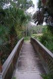 Κρατικό πάρκο του Oscar Scherer στοκ φωτογραφία