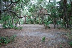 Κρατικό πάρκο του Oscar Scherer στοκ φωτογραφία με δικαίωμα ελεύθερης χρήσης