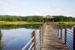 Κρατικό πάρκο Χάντινγκτον Μπιτς Στοκ Εικόνα