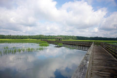 Κρατικό πάρκο Χάντινγκτον Μπιτς Στοκ Εικόνες