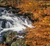 Κρατικό πάρκο Harriman, κράτος της Νέας Υόρκης Στοκ Εικόνες