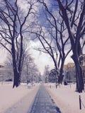 Κρατικό πανεπιστήμιο της Πενσυλβανίας στοκ φωτογραφίες