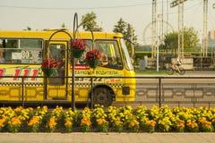 Κρεβάτια λουλουδιών ενάντια στο κίτρινο λεωφορείο στοκ εικόνα με δικαίωμα ελεύθερης χρήσης