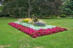 Κρεβάτι λουλουδιών σε Christchurch στοκ εικόνες