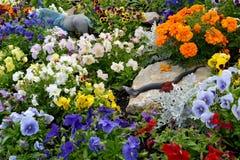 Κρεβάτι λουλουδιών με έναν αριθμό ενός φιδιού σε μια πέτρα Στοκ Εικόνα