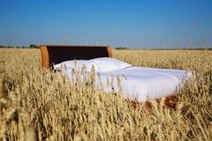 Κρεβάτι σε μια έννοια τομέων σιταριού του καλού ύπνου Στοκ Εικόνες