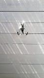 Κρεμάστρα στον άσπρο τοίχο Στοκ Φωτογραφία