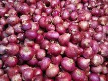 Κρεμμύδια για την πώληση Στοκ Εικόνες