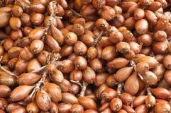 κρεμμύδια που συσσωρεύ&omi στοκ φωτογραφίες με δικαίωμα ελεύθερης χρήσης