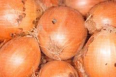 Κρεμμύδια σε μια τσάντα Στοκ Εικόνες