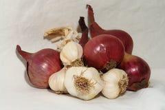 κρεμμύδια σκόρδου Στοκ εικόνες με δικαίωμα ελεύθερης χρήσης