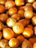 κρεμμύδια σωρών Στοκ φωτογραφίες με δικαίωμα ελεύθερης χρήσης