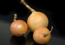 κρεμμύδια τρία Στοκ φωτογραφία με δικαίωμα ελεύθερης χρήσης