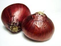 κρεμμύδια Στοκ εικόνες με δικαίωμα ελεύθερης χρήσης
