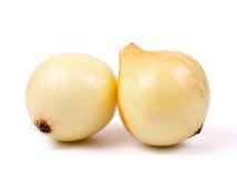 κρεμμύδι βολβών Στοκ Φωτογραφία