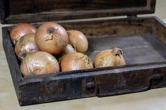 Κρεμμύδι καλύτερος ο συγκεκριμένος για τη γρίπη Σιρόπι που προετοιμάζεται από το onio Στοκ Εικόνες
