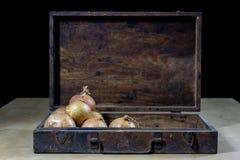 Κρεμμύδι καλύτερος ο συγκεκριμένος για τη γρίπη Σιρόπι που προετοιμάζεται από το onio Στοκ εικόνα με δικαίωμα ελεύθερης χρήσης