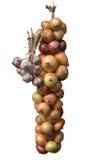 κρεμμύδι σκόρδου Στοκ φωτογραφίες με δικαίωμα ελεύθερης χρήσης