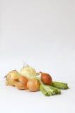 κρεμμύδι Στοκ Φωτογραφίες